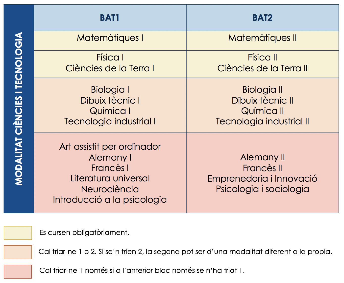 Estructura curricular tecnològic i científic